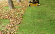 tonte de pelouse dans le nord et le pas de calais